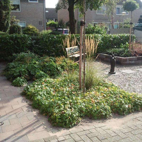 Kleine tuin Vechtdalgroen
