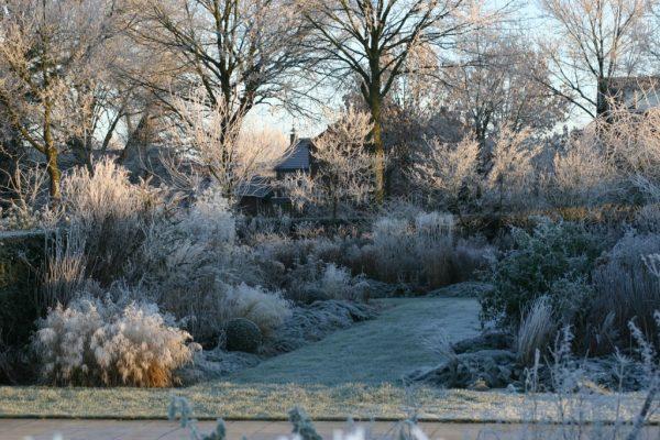 Wintertuin - vechtdalgroen